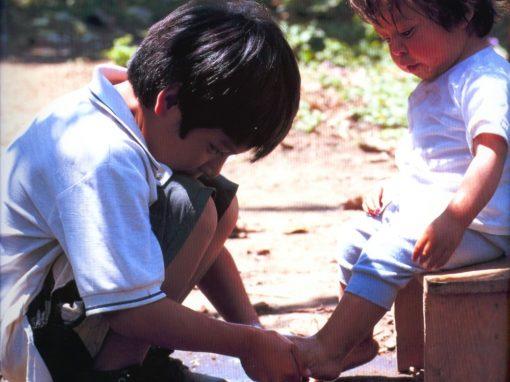 Ed. 6 – Disciplina: treinando o caráter